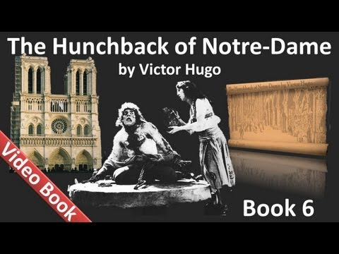 Book 06 - The Hunchback of Notre Dame Audiobook by Victor Hugo (Chs 1-5)