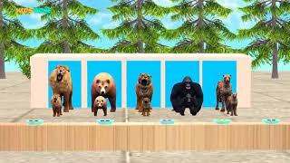 Download Wrong kid matching game Lion tiger gorilla bear Video