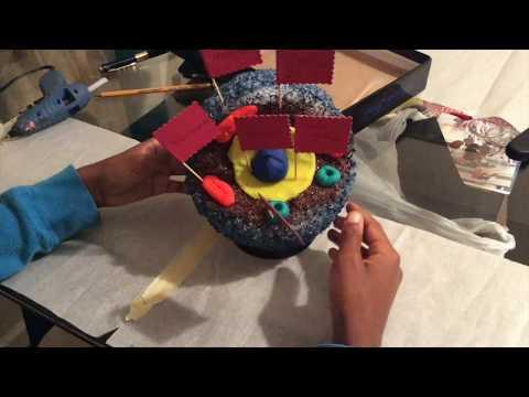 How to make a 3D Animal Cell Project{deletedVideo}