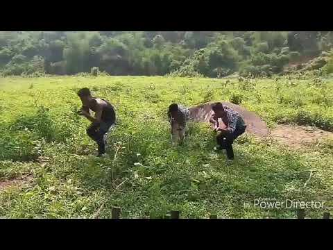 khamkhe part 3 new movie