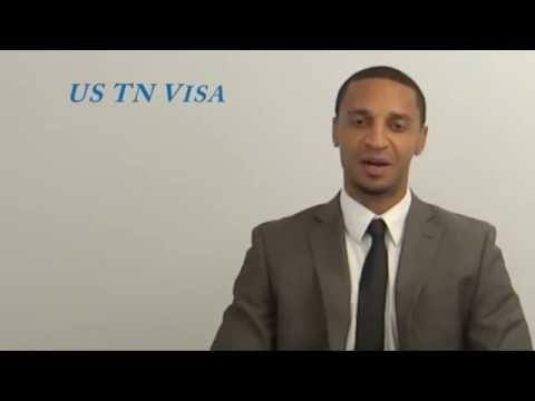 US TN Visa