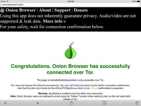 Onion Tor Browser for iOS
