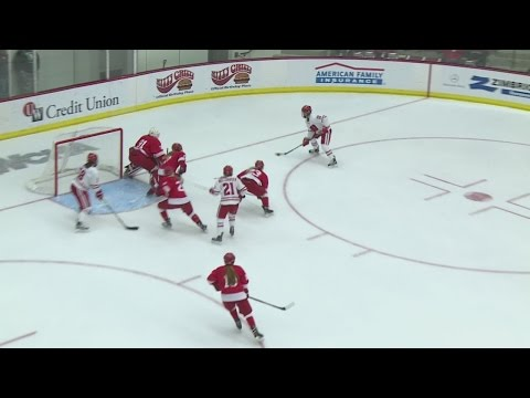 Badgers Beat Cornell