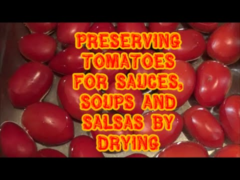 Preserving Tomatoes For Sauces and Salsas by Drying