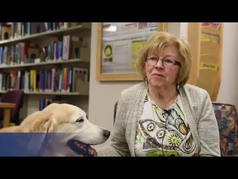 Therapy dog Kody, a member of L+M hospital volunteer family