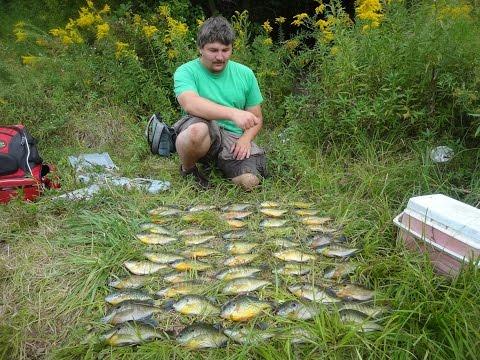Fishing for JUMBO Panfish for Dinner ft. Tim Galati (New York)