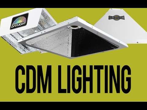 Is CDM Lighting Worth It?