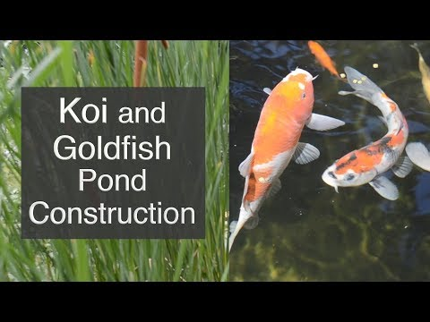 Koi and Goldfish Pond Construction