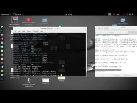 Install Easy Engine - Worpress - Nginx - Ubuntu