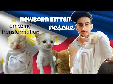 How I found my PUSPIN BABY! | MAUI BOY Rescue MANILA PHILIPPINES