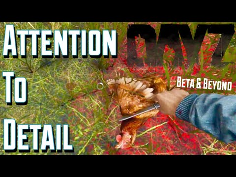 Attention to Detail in DayZ .63, Beta, and Beyond!