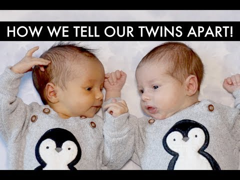 How To Tell The Twins Apart - Gay Dads & Twin IVF Surrogacy Journey /// McHusbands
