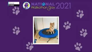 National Walkathon Day Recap