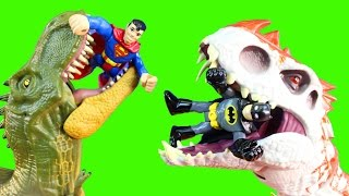 Jurassic World Indominus Rex Hybrid Battles Tyrannosaurus Dinosaur Eats Imaginext Batman Superman
