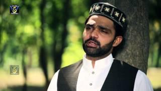 Meri Umar Madine De | Hafiz Zeeshan Ilahi Sayalvi | Naat 2015 | Ramadan Kareem