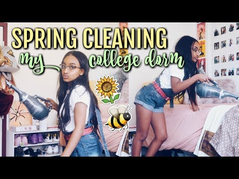 Spring Cleaning My College Dorm Room