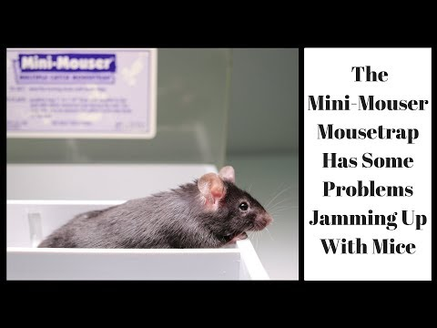 The Mini-Mouser Mousetrap Has Some Problems Jamming Up With Mice.