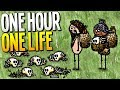 WE ARE THE ONLY ONE WHO CAN SAVE THIS TOWN AND BURY OUR FAMILY - One Hour One Life Gameplay