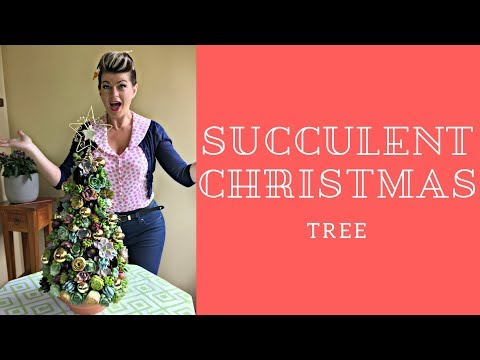 How to make a succulent Christmas Tree // Decorating with succulents // The Gardenettes