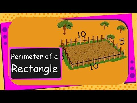 Maths - Perimeter of a Rectangle - English