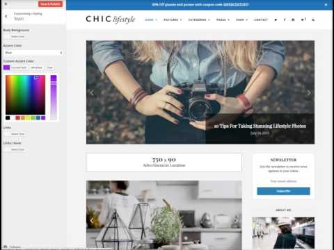Customizing Your Design - Chic WordPress Theme