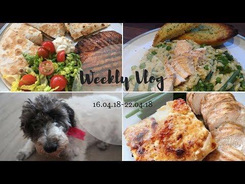 Weekly Vlog | The Loooong Week Back After Easter!