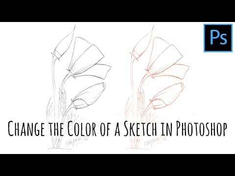 Photoshop - How to change the color of a line art sketch
