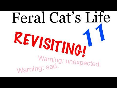 Feral Cat's Life 11 • Revisiting 1