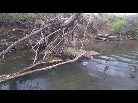 City Creek Treasure Hunt: Do you See Someone's Arm Underwater? Duluth Coat
