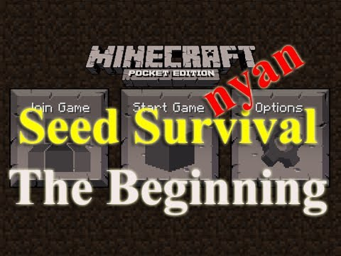 Minecraft PE Seed Survival - nyan - episode 1 - The Beginning