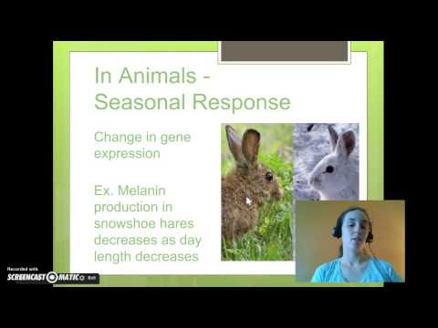 Organisms Respond to Changes in their Environment
