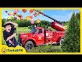 Giant Surprise Maze Game Family Fun Christmas Tree Farm Outdoor Holiday Park With Kids Activities