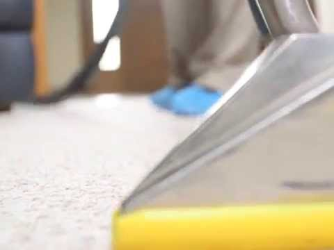 Getting rid of tough carpet stains