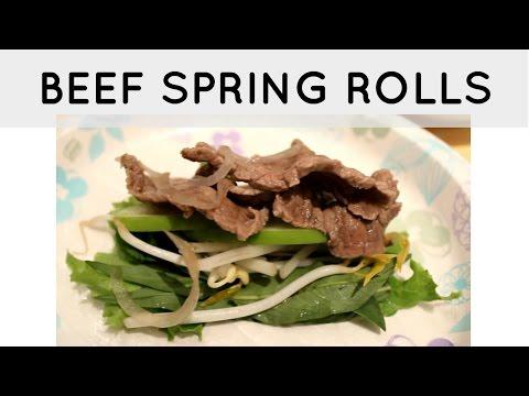 Vietnamese Beef Vinegar Hot Pot / Beef Spring Rolls / Bo Nhung Dam