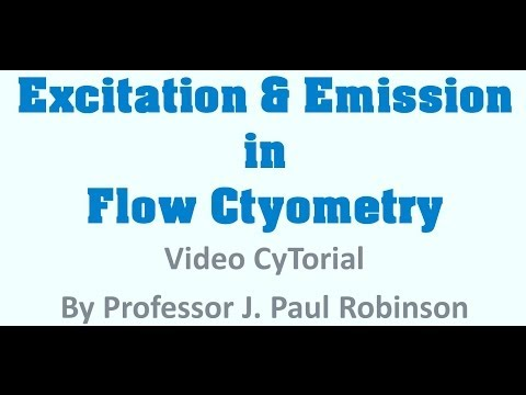 final excitation and emission