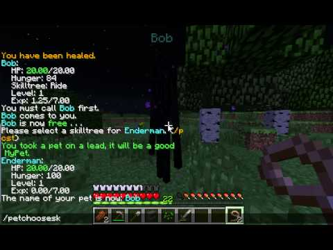 How to Tame an Enderman [1.7.2] Minecraft MyPets Tutorial