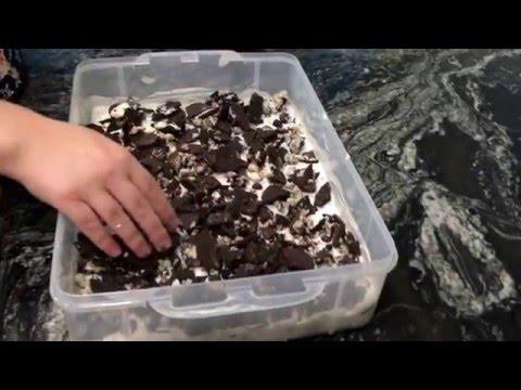Recipes Mania: Oreo Ice Cream Cake
