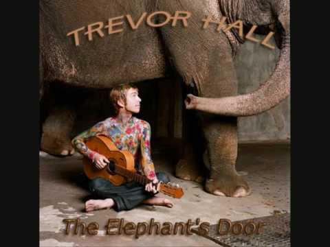 Trevor Hall - Ghosts - With Lyrics