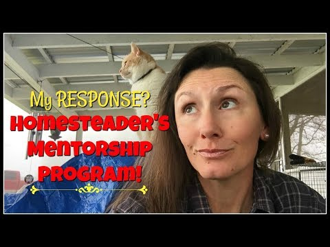 A MENTORSHIP Program-My PLAYING HOMESTEAD Response~