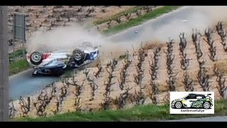 Best of rallye 2015-2016 (crashs,show and mistakes)