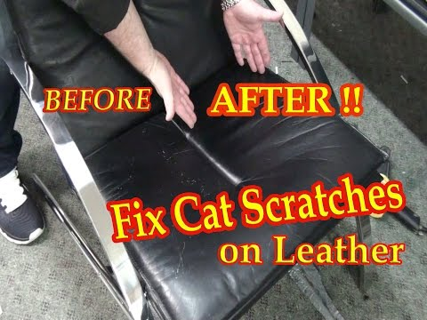 Fix Cat Scratches on a Black Leather Chair