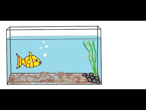How to draw a Fish aquarium for children Nursery rhymes This Old man