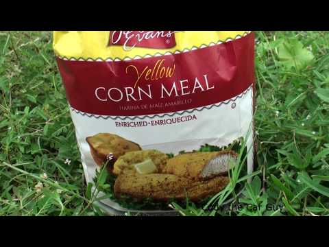 Fact or Fiction Corn meal or Grits KILLS Ants