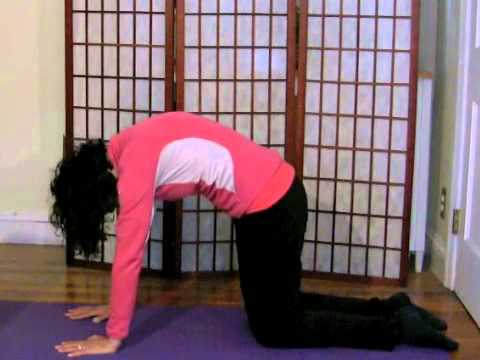 Cat Cow Stretch with Stacey Shipman | Healthy South Shore
