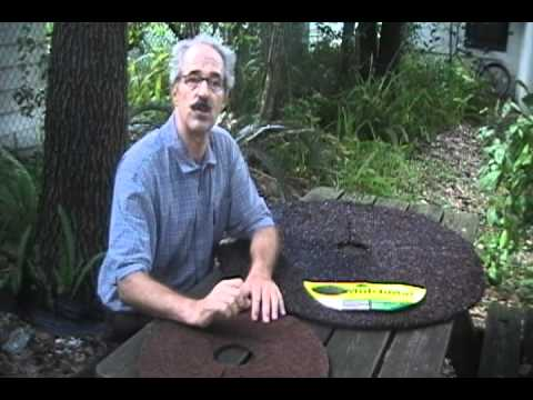 Rubber Mulch Tree Ring Vs Coco Fiber Tree Ring