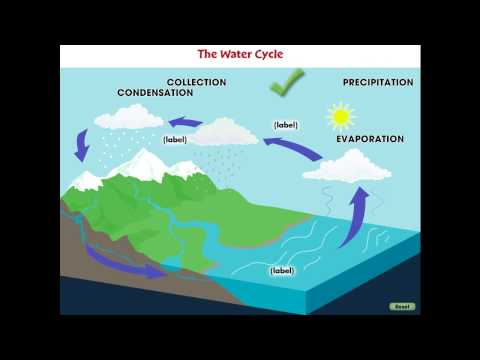 CC7747 Global Warming CAUSES: The Water Cycle Mini