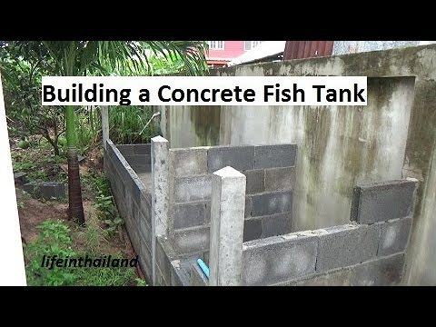 Building a concrete fish tank, start to finish.