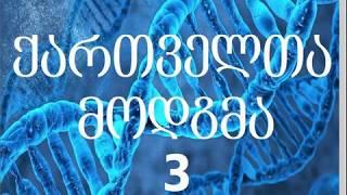 საუბრები ქართველთა მოდგმაზე, №3 — ❗კატასტროფა…