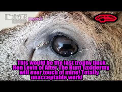 After The Hunt Taxidermy Ron Levin Deer Shoulder Mount GONE WRONG