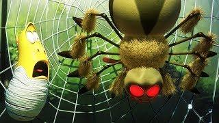 LARVA - SPIDER | Cartoon Movie | Cartoons For Children | Larva Cartoon | LARVA Official